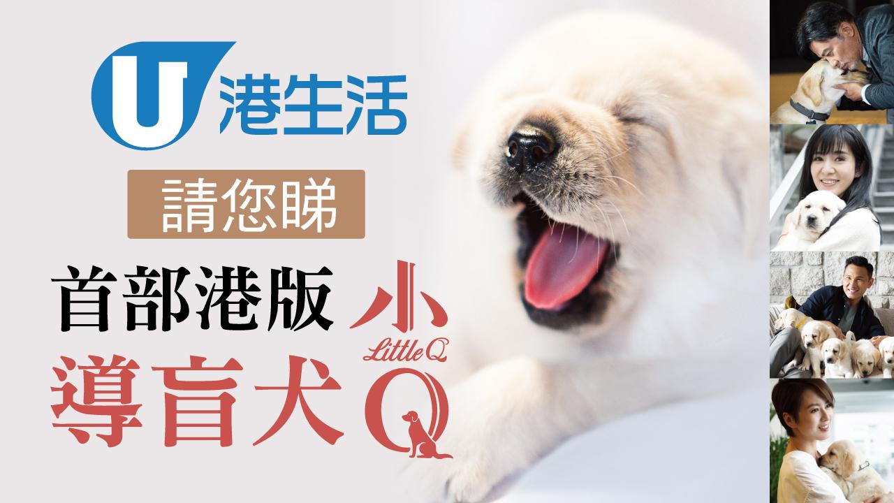 港生活請您睇首部港版導盲犬《小Q》!