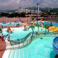 迎接泳季!全港公眾泳池4.1起開放