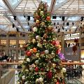 環保署回收聖誕樹循環再造!全港8大收集點+時間一覽