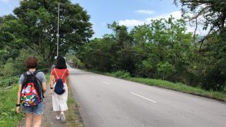 【粉嶺好去處】新手輕鬆行鹿頸 - 谷埔 日落海景/蘆葦田/豆腐花