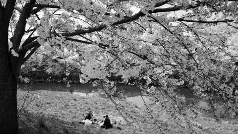 「黑白對話」攝影展覽