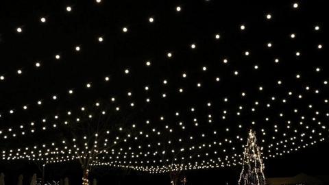 大埔聖誕燈飾+草地BBQ!12米聖誕樹/5米水晶球彈床/市集