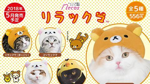 San-X鬆弛熊/角落生物貓貓頭套!10款Cute爆造型登場