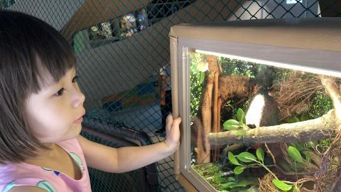 【北角好去處】全港首個6000呎兒童博物館!4大區域探索自然/舞台表演