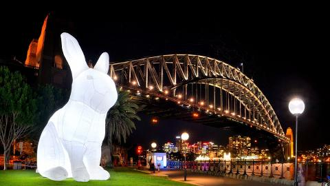 【尖沙咀/灣仔好去處】10隻巨型月兔登陸灣仔/尖沙咀!800個彩色花燈超壯觀