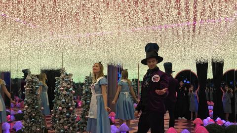 【聖誕節2018】愛麗絲聖誕燈飾登陸沙田新城市!20大影相位/玫瑰燈海/展覽