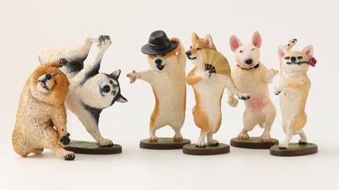 日本Animal Life新作!6款狗狗變身Dancing Dog 扮Michael Jackson經典舞姿