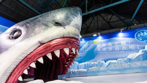【九龍灣好去處】日本Move生物體驗展7月襲港 6大主題區扮企鵝/蜥蜴/甲蟲/獅子