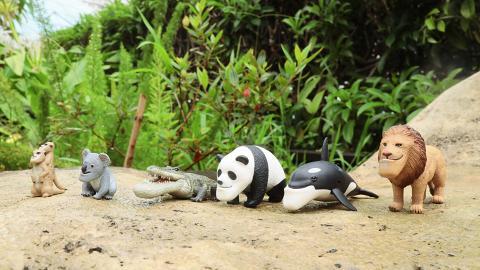 【暑假好去處】日本戽斗星球動物7月首度襲港!太自由女神影相位/期間限定店