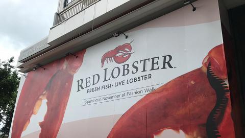 【銅鑼灣美食】美國人氣連鎖龍蝦店Red Lobster抵港 登陸銅鑼灣料11月開幕