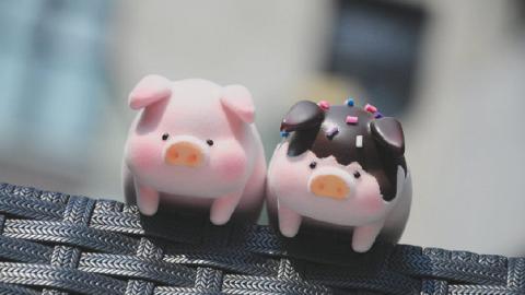 熱爆「罐頭豬仔」變身8大鬼馬造型 肥嘟嘟減肥豬+雪人/泰王/青花瓷/朱古力造型