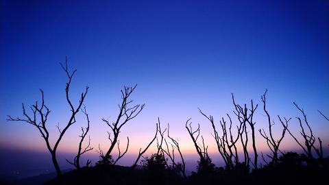 【行山路線】虎蹤徑 - 大帽山行山路線推介!芒草盛放/夕陽美景/壯觀瀑布