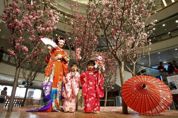 聽着日本和樂賞櫻!海港城「日本櫻花文化祭」