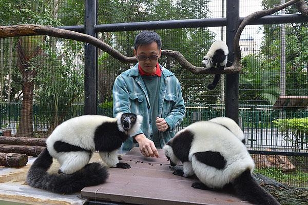 近距離認識稀有猴子!動植物公園「護理聚談」 (圖:香港動植物公園)
