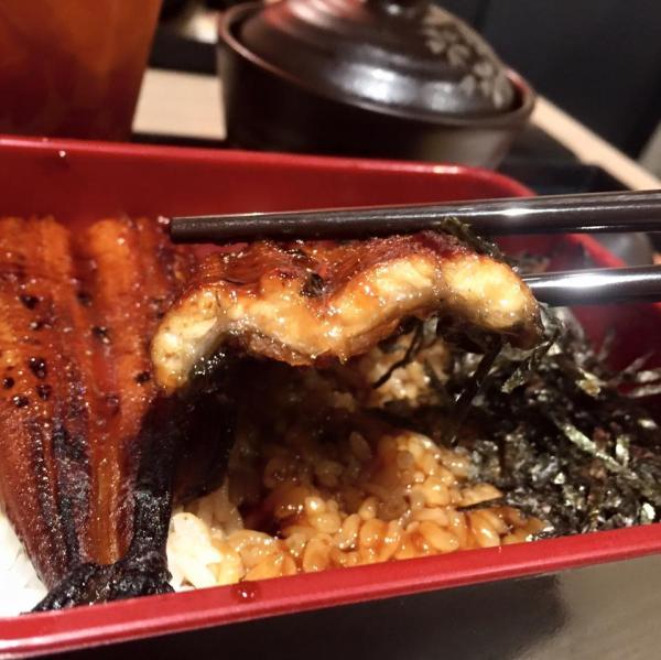 繼鰻魚飯後!吉野家即將新推鯖魚定食