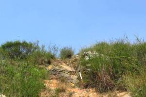 【登山】河上鄉後山。大石磨