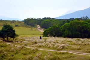 【JoyeeWalker行山系列】3分鐘行完 綠・青青草地《昂平草原》