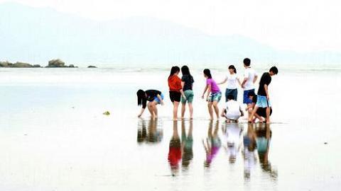 水口村泥灘