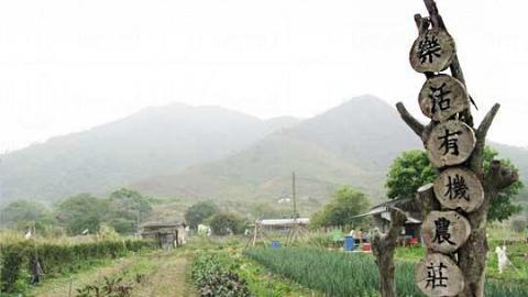 樂活有機農莊