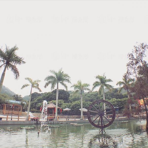 大棠有機生態園