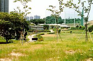 屯門歷奇公園