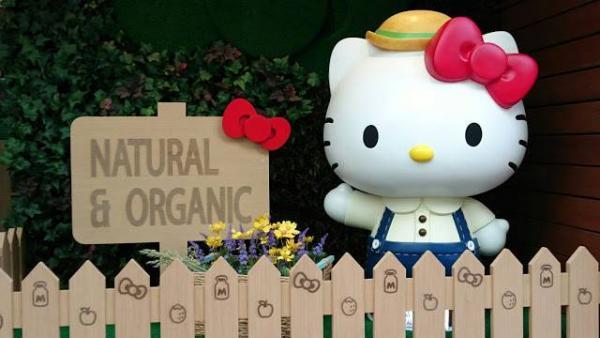 Hello Kitty Green Living(圖:FB@Sanrio Hong Kong)