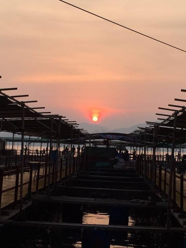 西貢滘西灣魚排