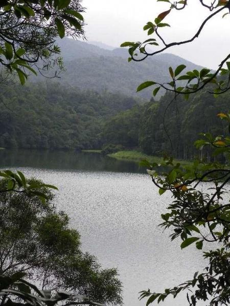 流水響的水塘清靜優美。