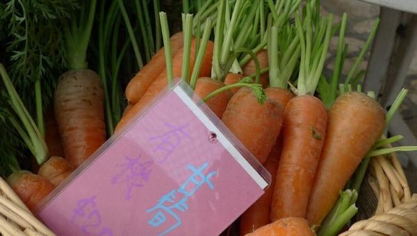 有機甘筍 $ 20 一斤,更可於網上購買。