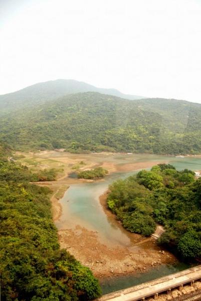 大壩上旁的大潭灣紅樹林。