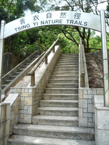 於青衣地鐵站乘搭 248M 至終點站後,再沿著馬路向上步行 約 10 分鐘就即可到達自然徑的入口。(相片來源:Clara Lee)