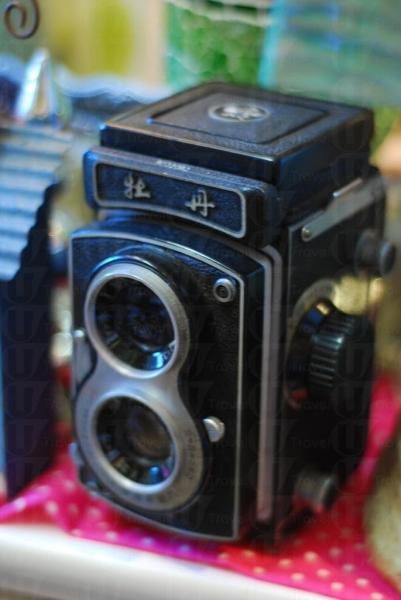 絕版牡丹相機不過數百元。