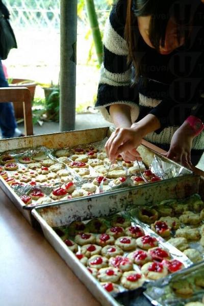 綠色飲食系列的季節性活動-製作洛神花茶、曲奇及蜜餞。