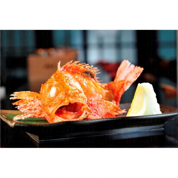 田舍家爐端燒喜知次魚,是十分珍貴的深水魚。