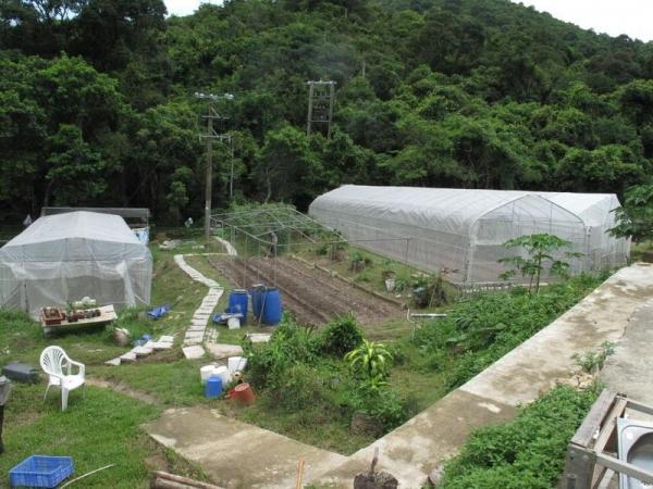 場內有自摘和農地租耕活動。