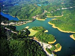 九龍水塘(漁農處圖片)