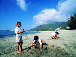 海灣沙灘(漁農署圖片)