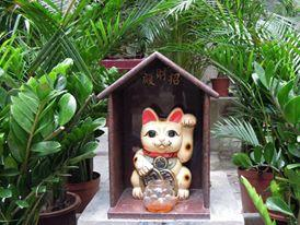 被供奉著的招財貓。(相片來源:長春社文化古蹟資源中心)