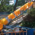 香港公園4米長滑梯 最快九月重開