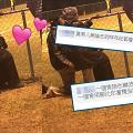 伯伯為愛妻單膝下跪充當人肉椅子!貼心舉動獲網友讚「真男人」典範