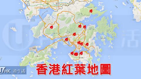 區區有紅葉!香港13大紅葉勝地