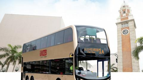 九巴考慮設假日寵物巴士線!貓狗都可搭巴士