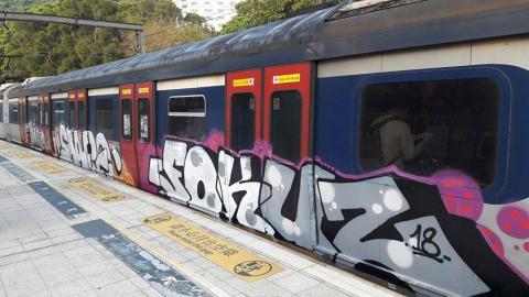 東鐵列車現獨特塗鴉 網民讚有創意望港鐵保留