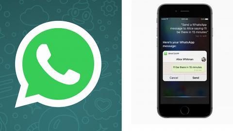 WhatsApp將強制加入廣告!料iOS手機先「中招」