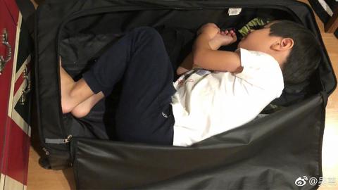 吳尊囝囝Max不捨父親出差半個月 自己藏入行李箱求帶走超可愛