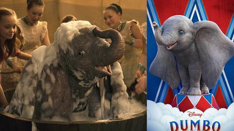 【小飛象】Dumbo原型身世超坎坷!被馬戲團灌酒馴服/遭火車撞死仍當生財工具