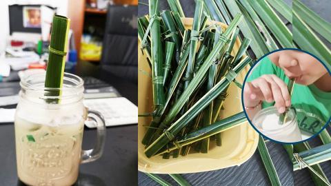 菲律賓新推椰子葉環保飲管 2分鐘自製簡單易整/可天然分解