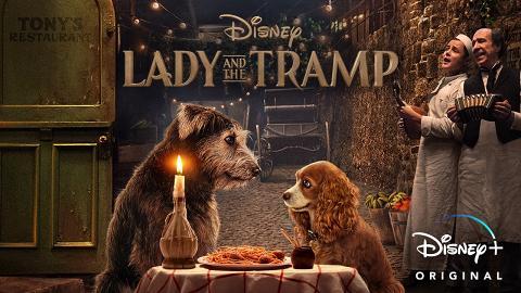 迪士尼經典動畫《小姐與流氓》翻拍真狗版!全狗演出11月Disney+上映