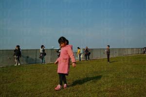 濕地公園的大草地十分適合一家大小前來拍照遊玩,是園內免費享用的設施。( 孫靜雯攝 )