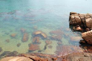 如此清澈的水質,香港別處難尋。